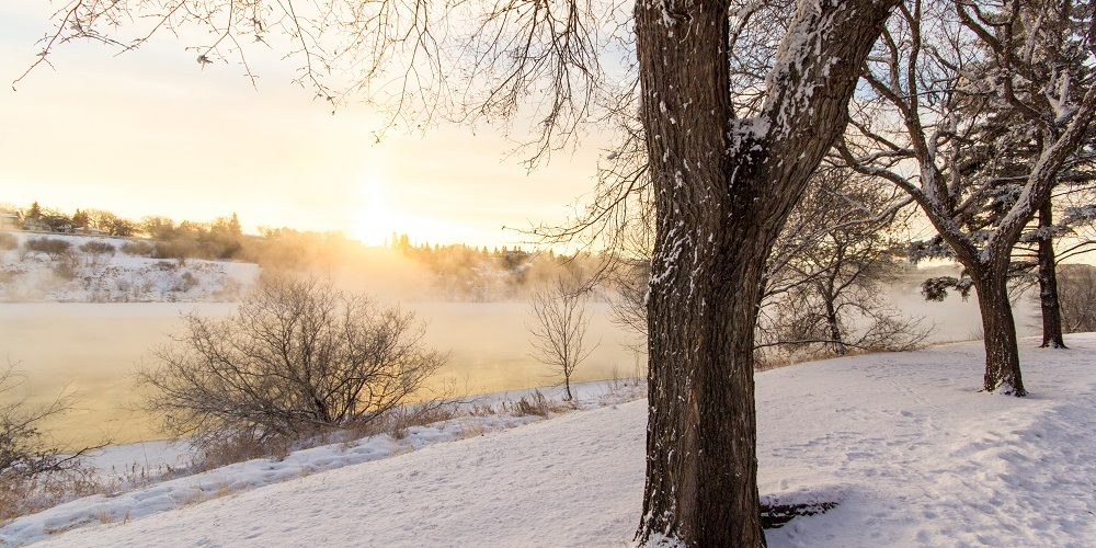 Winter in Saskatchewan. Photo by Kristin Ator.