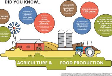 Outlook - Agriculture and Agri-Food 2019