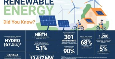 Outlook: Renewable Energy